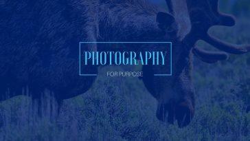 brian_photgraphy