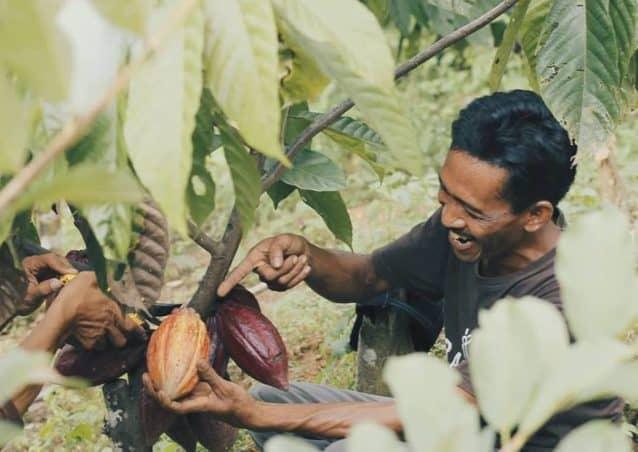 Krakakoa a craft chocolate social venture