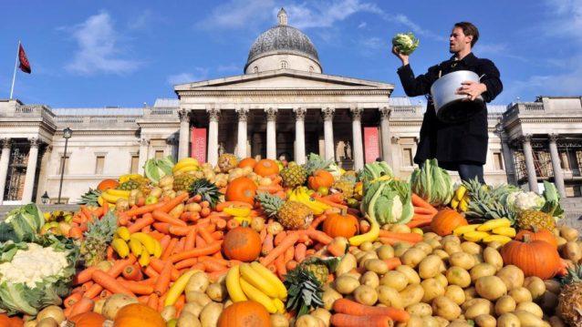food_waste_global_impact