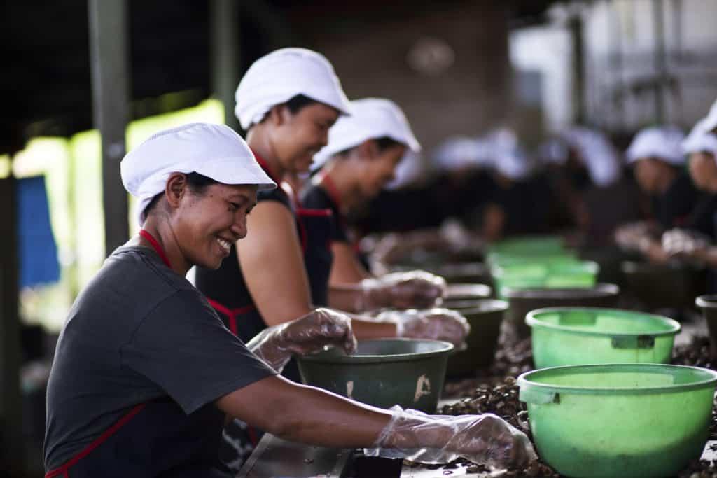 5 East Bali Cashews_socialimpact