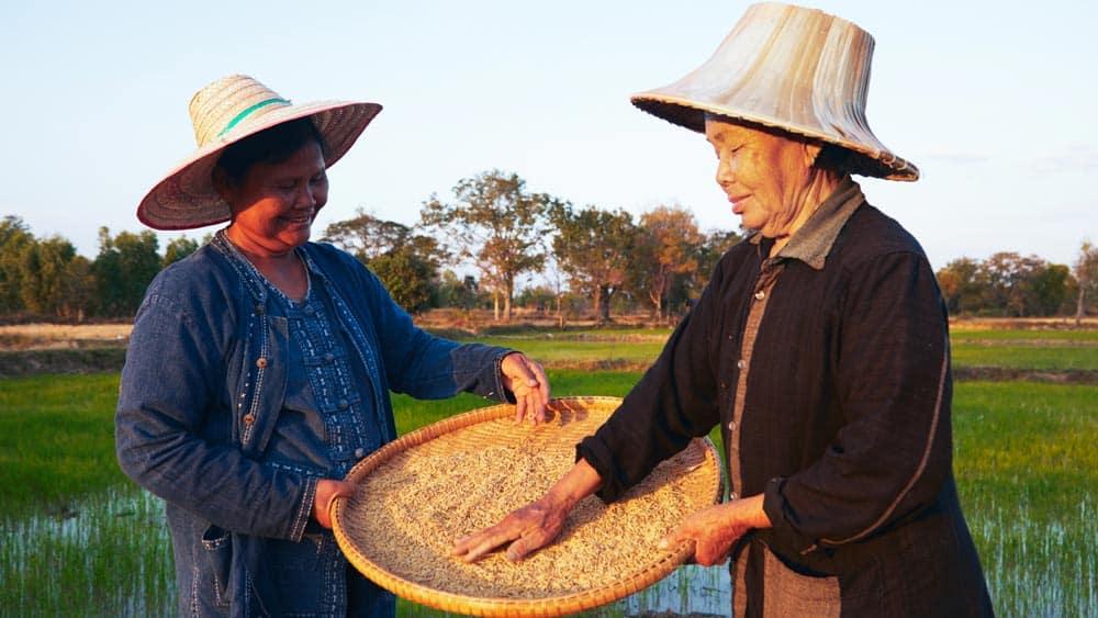 Siam Organic_socialenterprise
